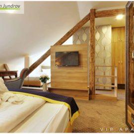Penzion Brno, vip apartma